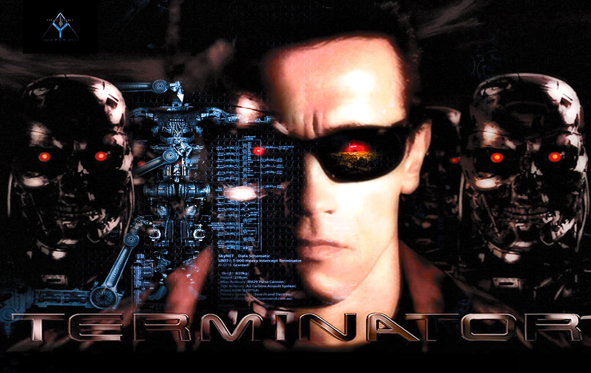 terminator 2 essay Terminator 2 judgment day analysis essay sensitivity towards our clients commitment and dedication licensed and experienced attorneys flexibility to work around.